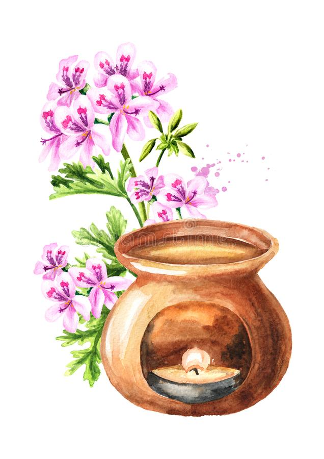 Pelargonium graveolens or Pelargonium x asperum, geranium flower essential oil and aroma lamp. Watercolor hand drawn illustration. Isolated on white background royalty free illustration