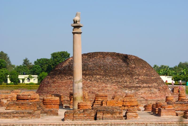 Pelarna grundar på Vaishali med den huvudAshoka för det enkla lejonet pelaren i Indien royaltyfria bilder