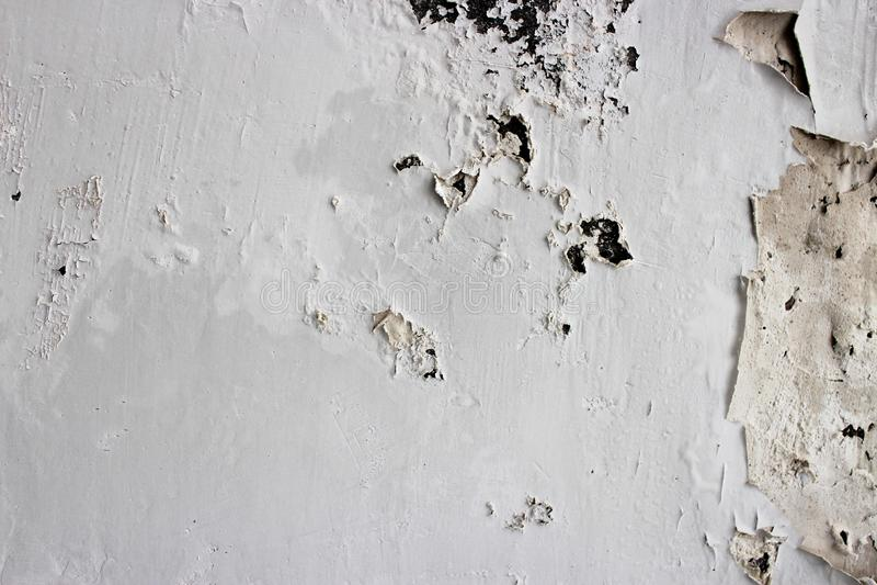 Pelatura della parete bianca fotografia stock