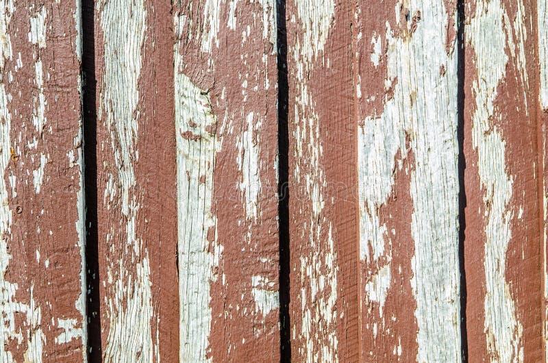 Pelatura della pittura rossa vecchia sul fondo della parete di legname immagine stock