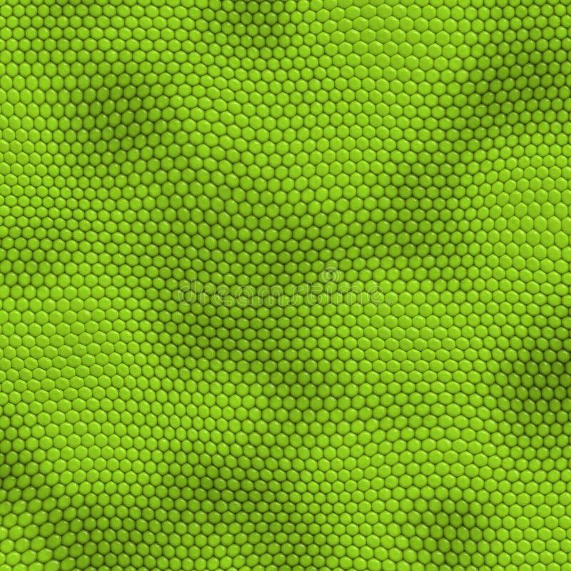 Pele da iguana ilustração do vetor