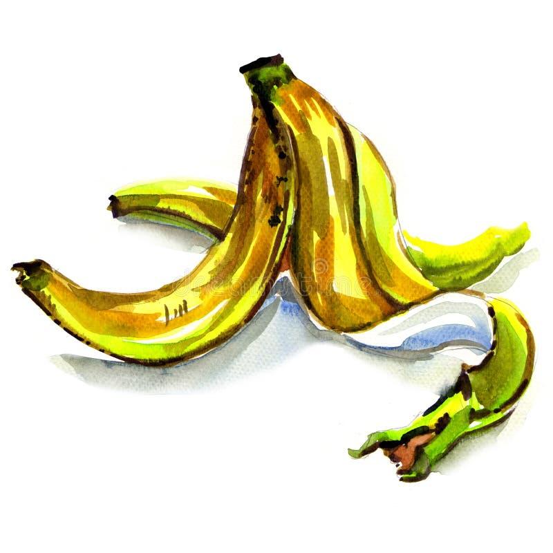 Pele de banana isolada no fundo branco ilustração do vetor