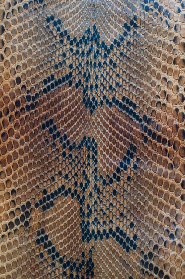 Pele de serpente imagens de stock