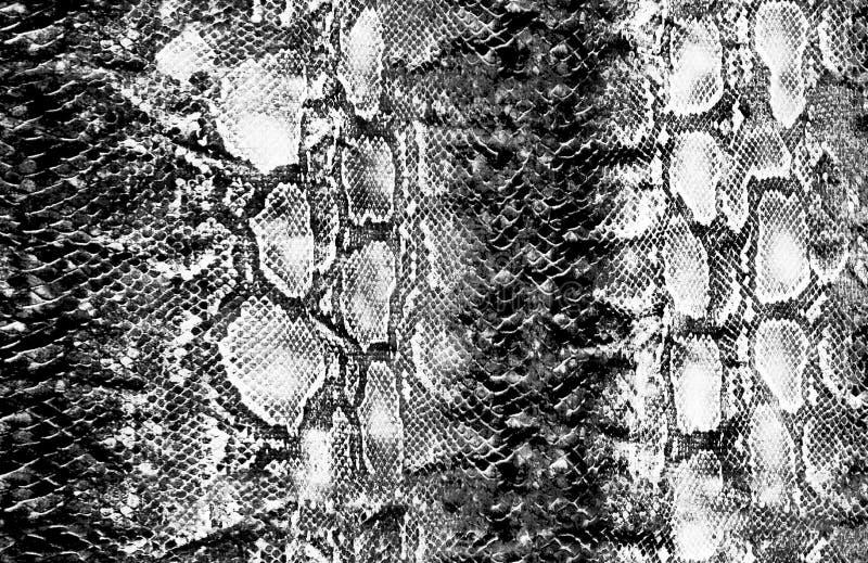 Pele de serpente e teste padrão animais da superfície ilustração royalty free