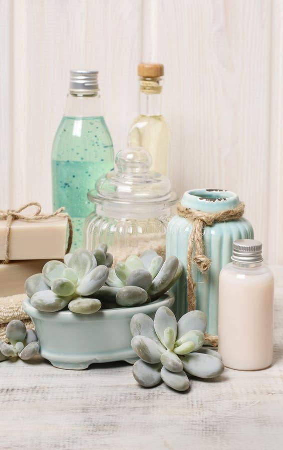 Pele seca hidratando: grupo de cosméticos e de plantas suculentos fotos de stock royalty free