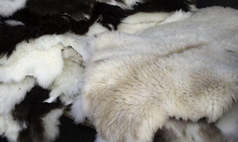Peles animais naturais fotografia de stock royalty free
