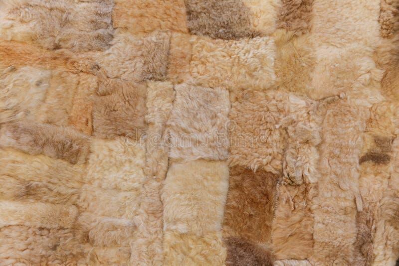 Peles dos carneiros na venda na vila Lahij- Azerbaijão fotos de stock