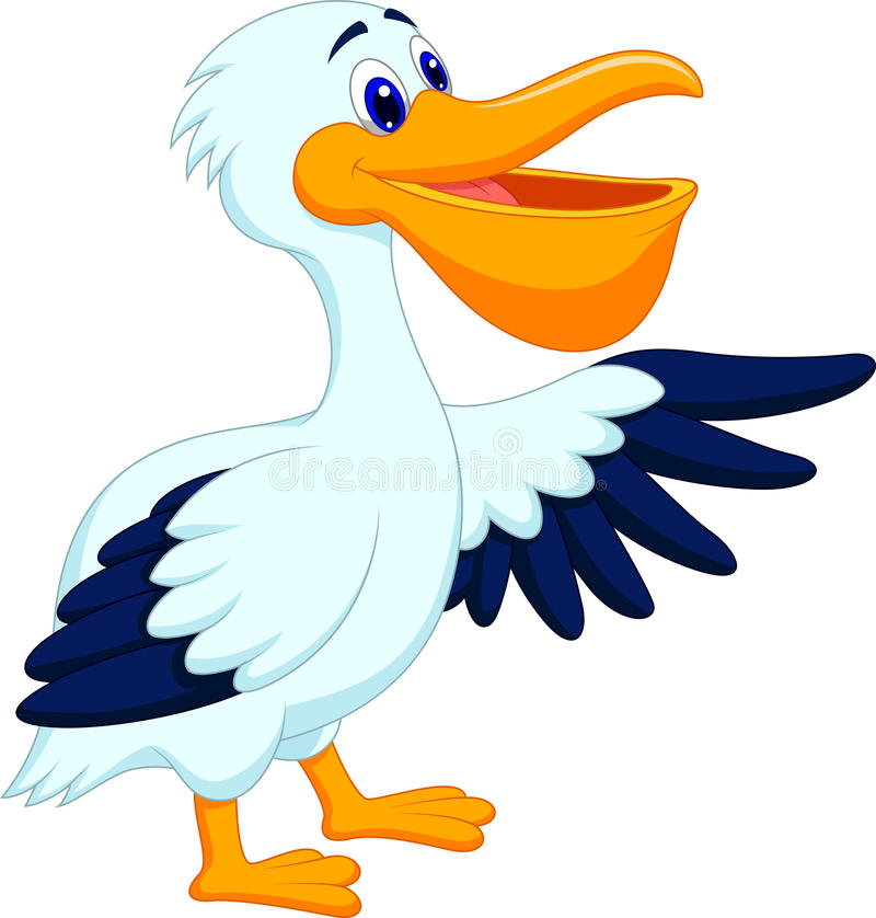 Pelican bird cartoon waving royalty free illustration