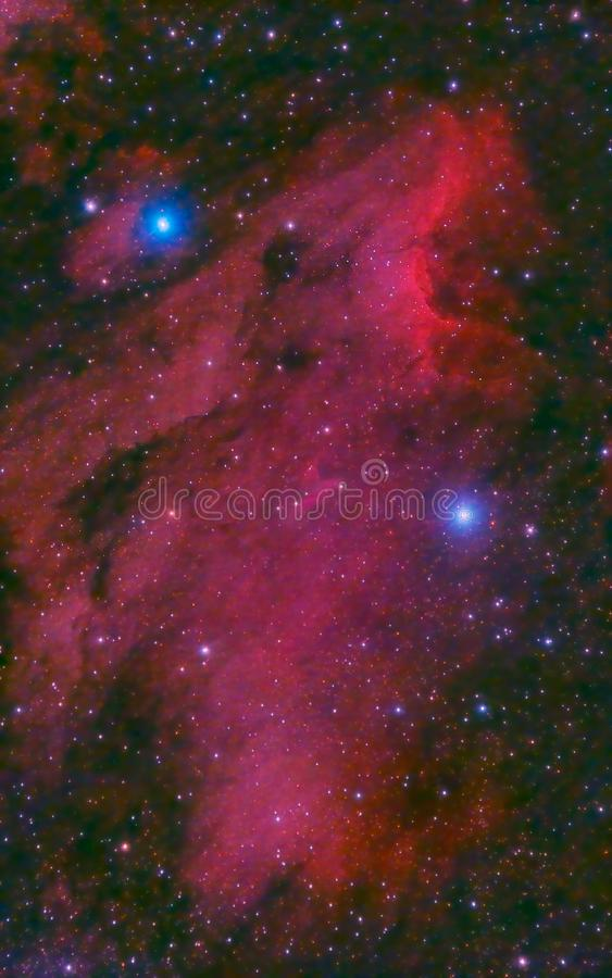 Download Pelican Nebula in cygnus stock photo. Image of cocoon - 21281506