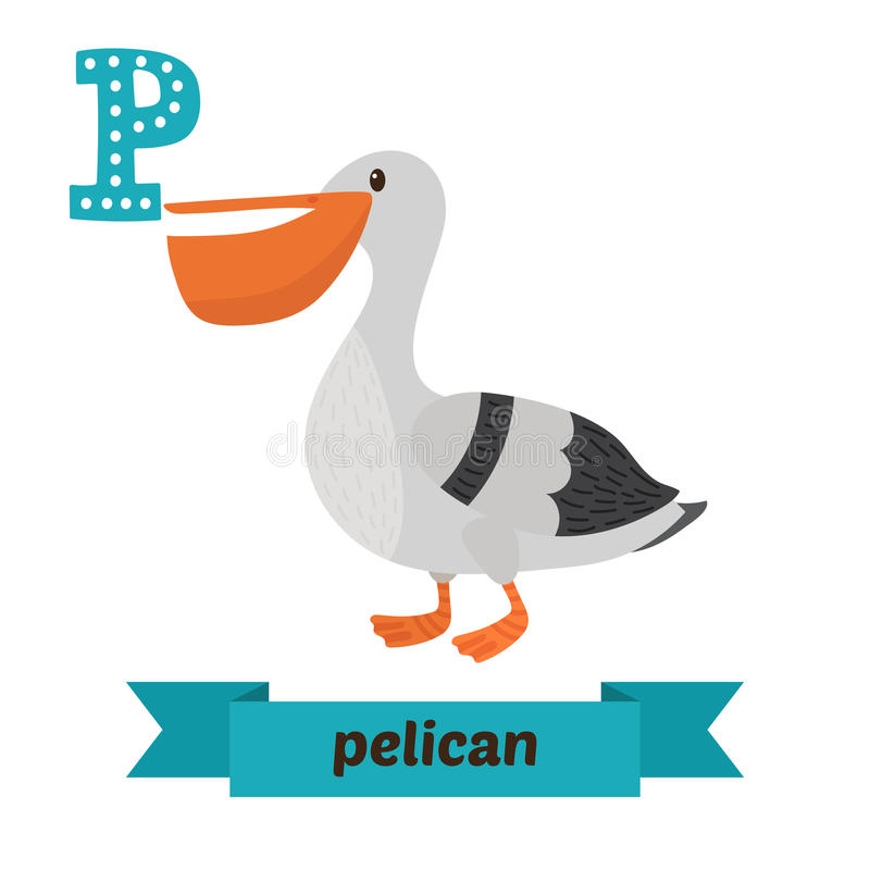 Pelican. P letter. Cute children animal alphabet in vector. Funny cartoon animals royalty free illustration