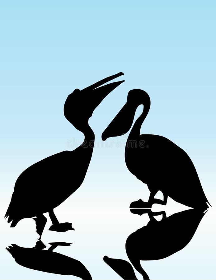 Pelicano ilustração do vetor