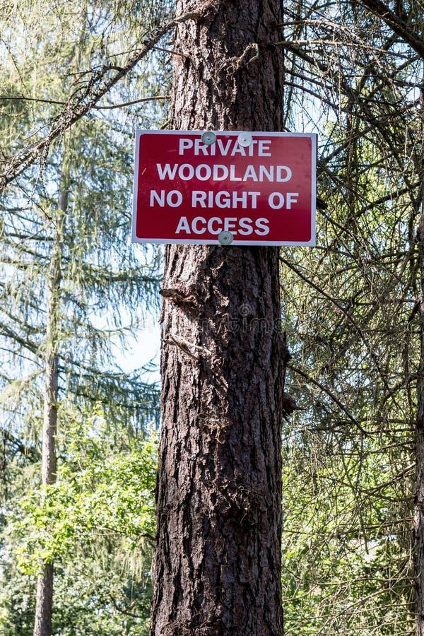 Peligro señal adentro el bosque fotos de archivo
