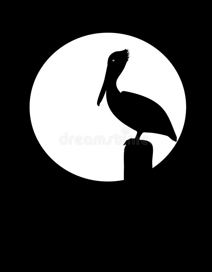 Pelikan-Schattenbild vektor abbildung