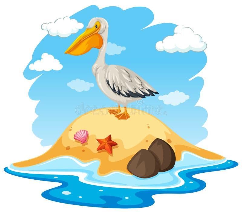 Pelikan-Vogel auf kleiner Insel stock abbildung