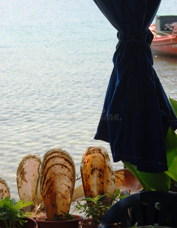 Pelionschiereiland in Griekenland royalty-vrije stock fotografie