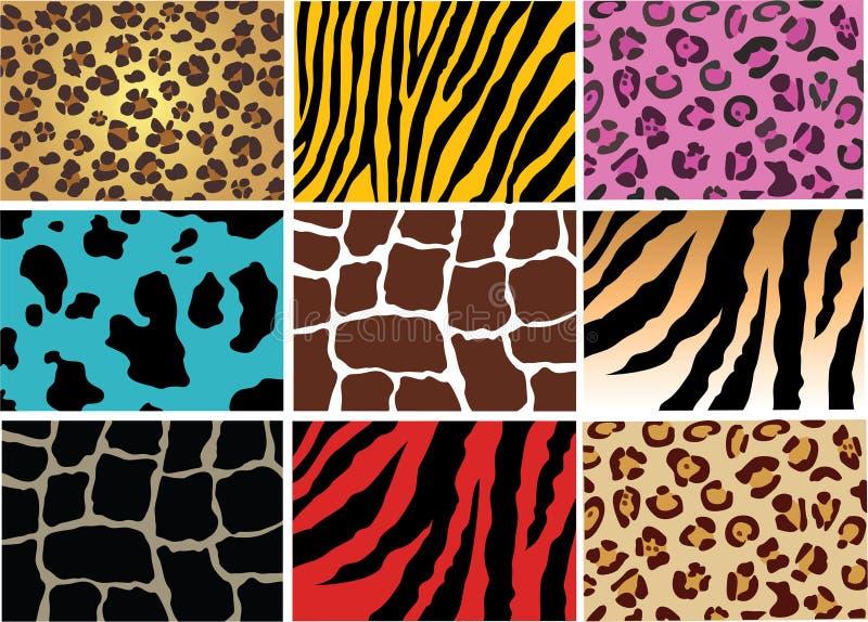 Pelle animale illustrazione di stock