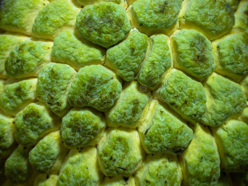 Download Pelle della mela cannella immagine stock. Immagine di fresco - 56887593