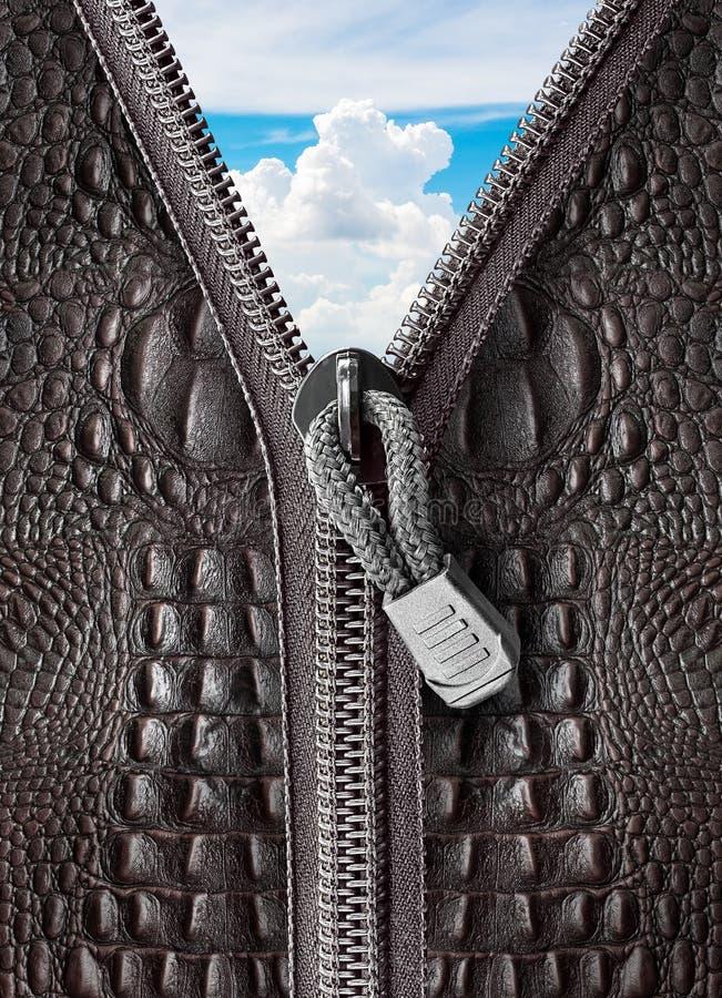 Pelle di coccodrillo con la chiusura lampo fotografie stock libere da diritti