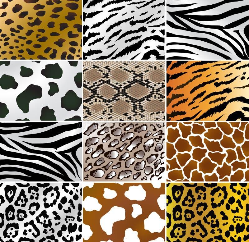 Pelli animali illustrazione di stock