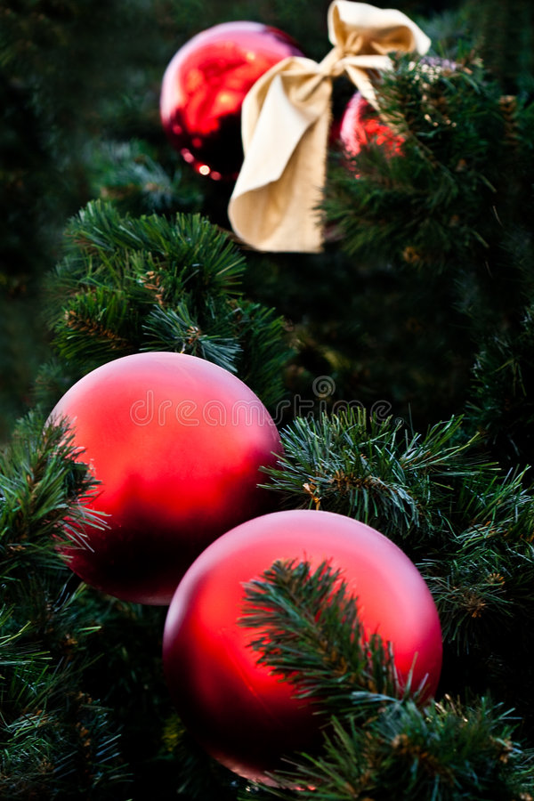 Pelliccia-albero con le sfere rosse fotografia stock libera da diritti