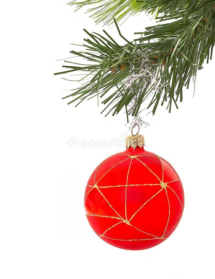 Pelliccia-albero di natale su una priorità bassa bianca con una sfera fotografie stock libere da diritti