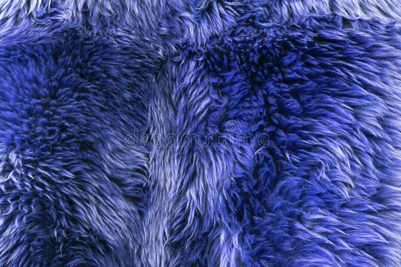 Pelliccia del Faux - capo blu immagine stock libera da diritti