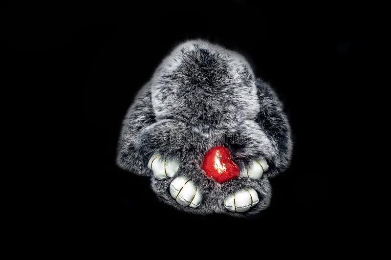 Pelliccia grigia del coniglio con cuore rosso su fondo nero fotografia stock libera da diritti