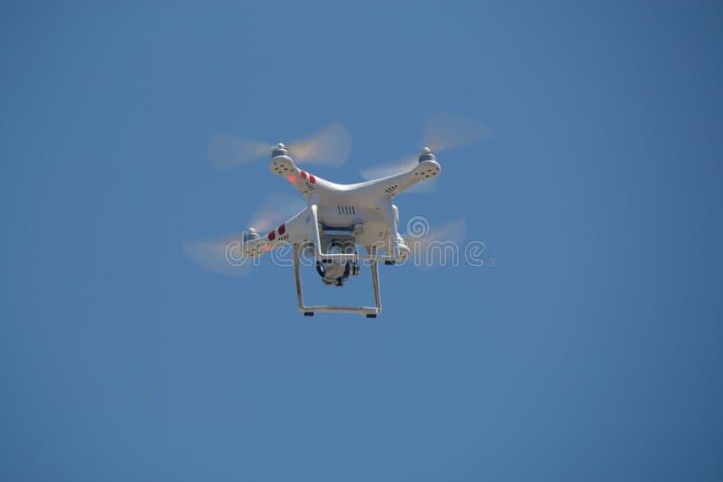 Pelliculage de bourdon dans le ciel photos libres de droits