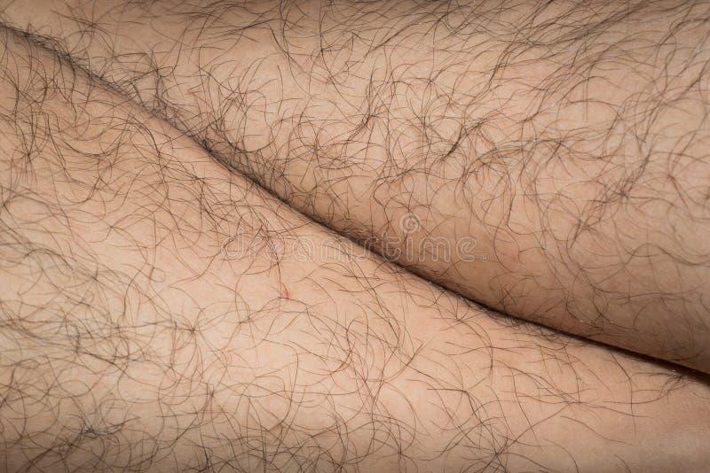 Pelo de la pierna imagen de archivo