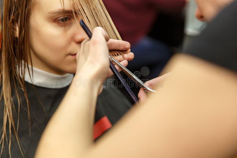 Pelo de teñido del peluquero profesional de su cliente en salón Pelo cuting del peluquero Foco selectivo imágenes de archivo libres de regalías