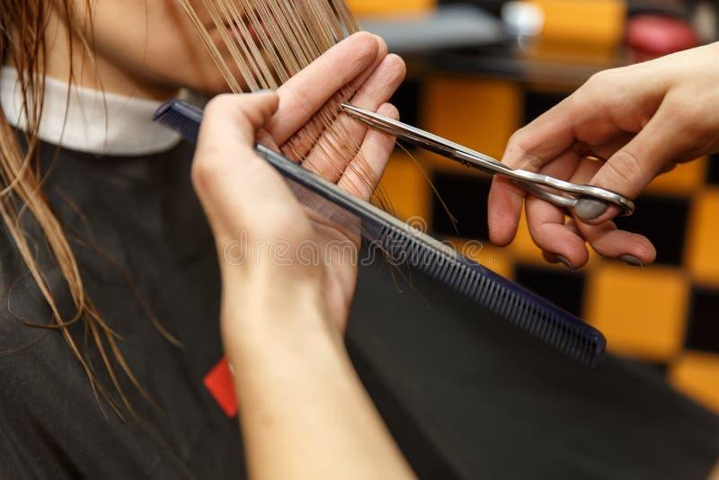 Pelo de teñido del peluquero profesional de su cliente en salón Pelo cuting del peluquero Foco selectivo imagen de archivo libre de regalías