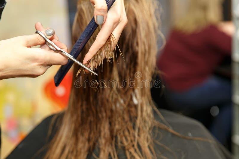 Pelo de teñido del peluquero profesional de su cliente en salón Pelo cuting del peluquero Foco selectivo fotos de archivo libres de regalías