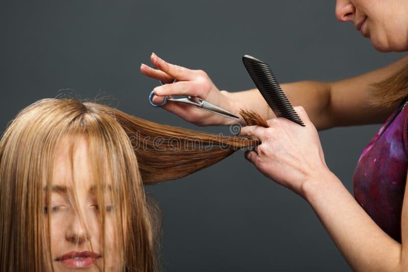 Pelo del cliente del corte del peluquero fotos de archivo