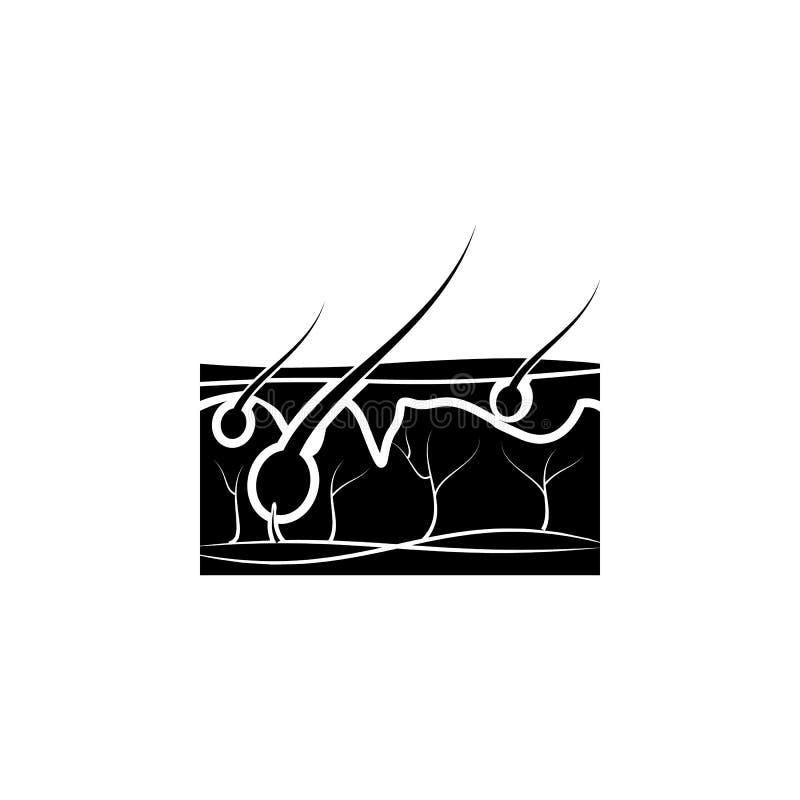pelo en el icono de la piel Elemento del icono de las partes del cuerpo Icono superior del diseño gráfico de la calidad Muestras  ilustración del vector