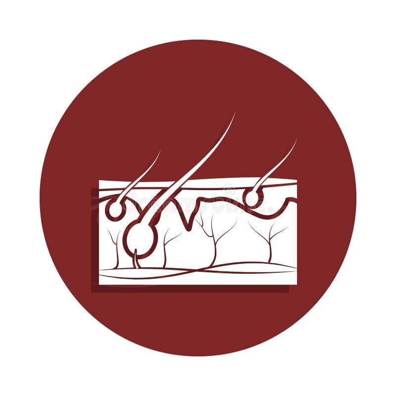 pelo en el icono de la piel en estilo de la insignia Uno del icono de la colección del órgano se puede utilizar para UI, UX stock de ilustración