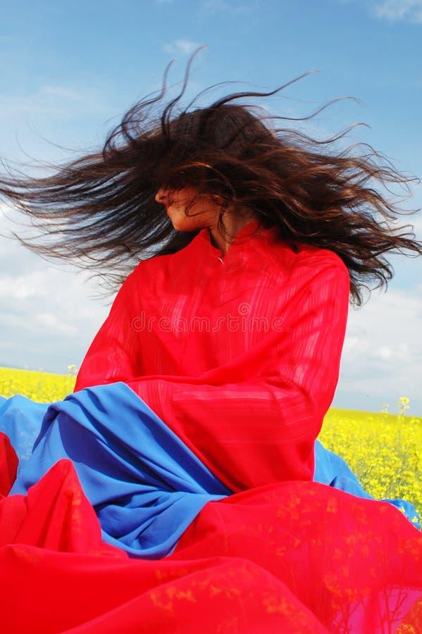 Pelo en el viento fotografía de archivo