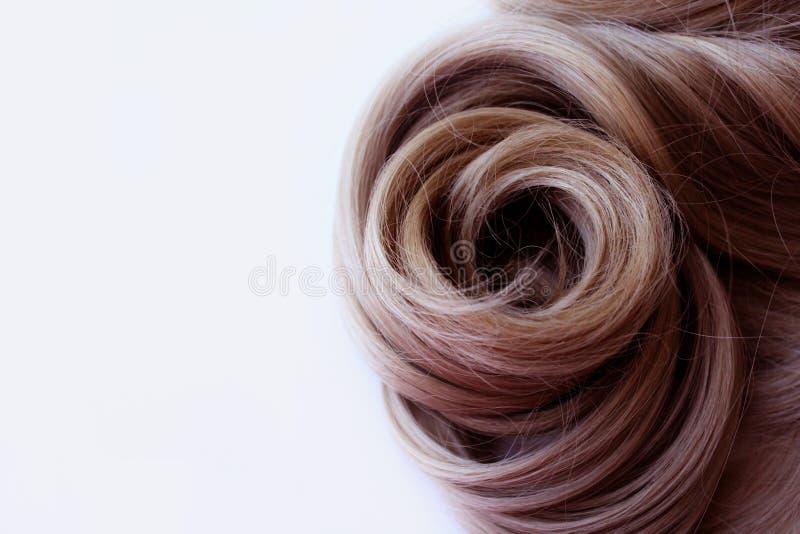 Pelo hermoso Pelo de Brown El pelo se recolecta en un bollo en un fondo blanco con el espacio libre para el texto Para un cartel  foto de archivo libre de regalías