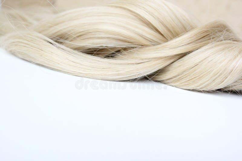 Pelo hermoso Pelo ligero enrollamiento Filamento del pelo Rizo en el fondo blanco con el espacio libre para el texto Para un cart imagen de archivo