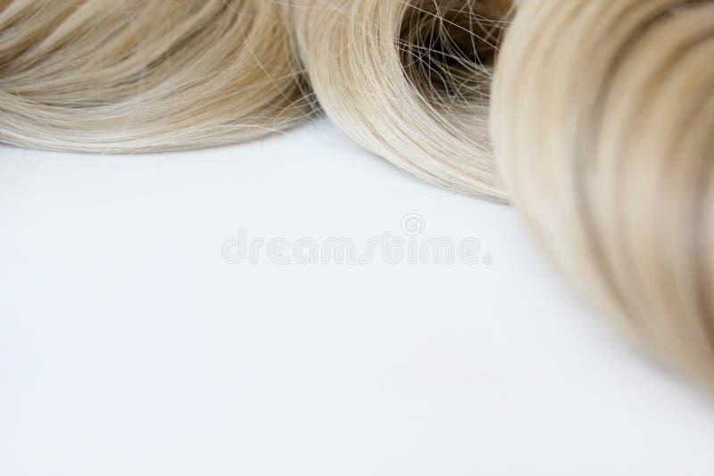 Pelo hermoso Pelo marr?n claro El pelo se recolecta en un bollo en un fondo blanco con el espacio libre para el texto Para un car fotografía de archivo