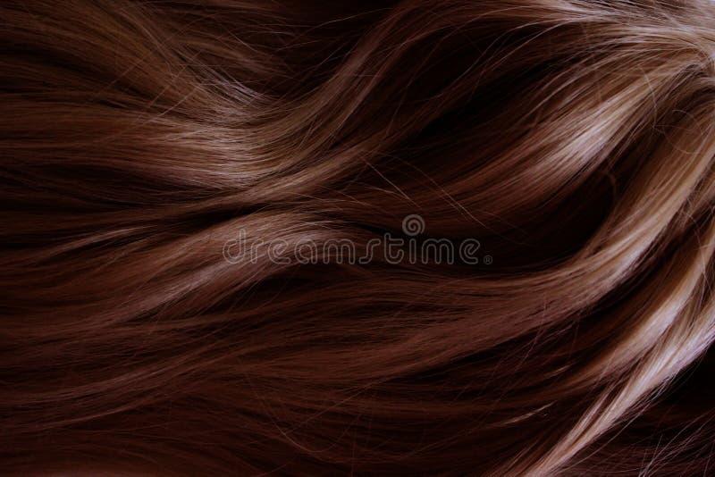 Pelo hermoso Pelo rojo rizado largo Coloración en rojo oscuro fotografía de archivo