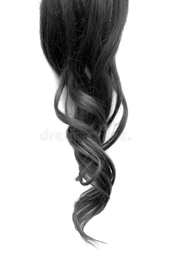 Pelo negro ondulado natural aislado en el fondo blanco foto de archivo