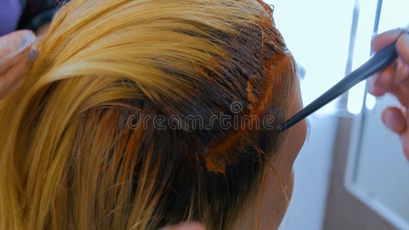 Pelo profesional del colorante del peluquero del cliente de la mujer en el estudio fotos de archivo