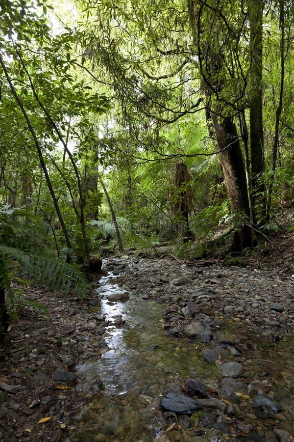 Download Pelorus Bridge Scenic Reserve In New Zealand Stock Image - Image: 28714665