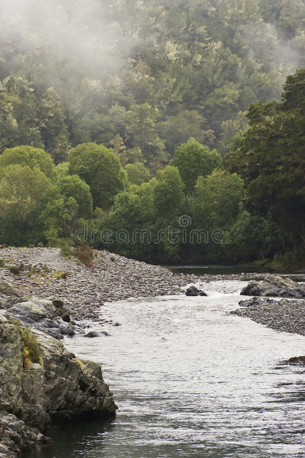 Download Pelorus River stock photo. Image of mist, hike, bush, rugged - 4613148