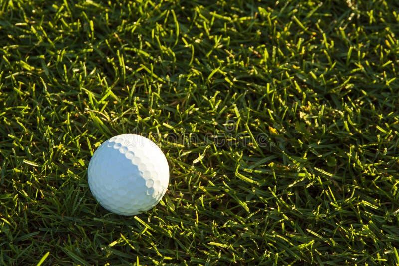 Pelota de golf en espacio abierto en la salida del sol imágenes de archivo libres de regalías