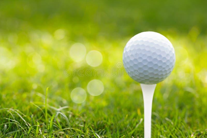 Pelota de golf en fondo del bokeh de la hierba verde foto de archivo