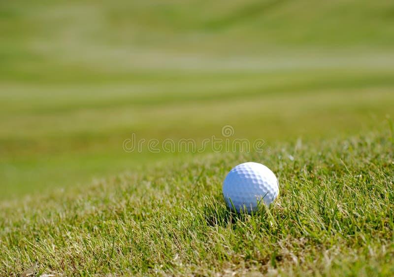 Pelota de golf en hierba imágenes de archivo libres de regalías