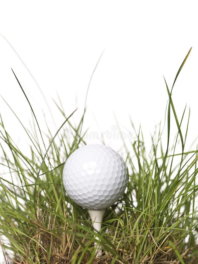 Pelota de golf en hierba verde imagen de archivo