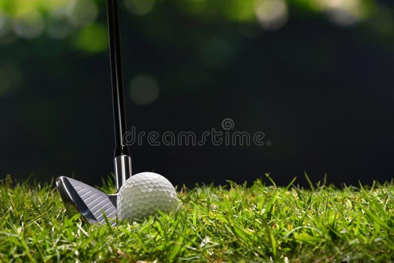 Pelota de golf en la hierba verde lista para ser pegado en campo de golf foto de archivo