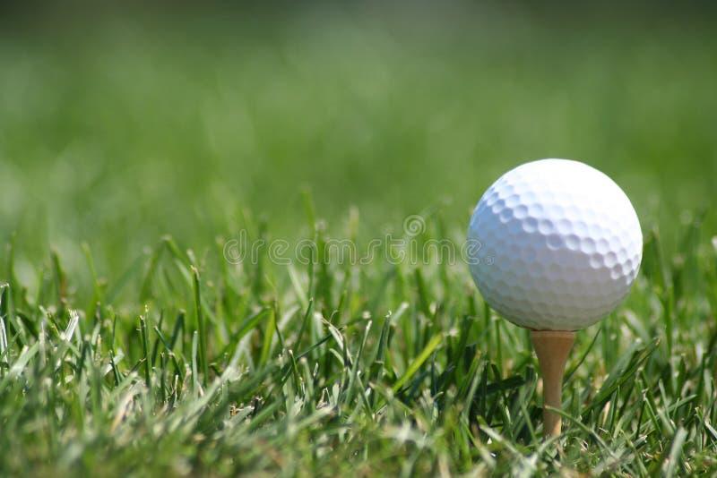 Pelota de golf en te fotografía de archivo libre de regalías